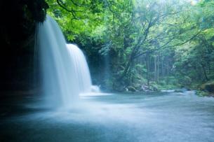 阿蘇の鍋ヶ滝の写真素材 [FYI03017446]