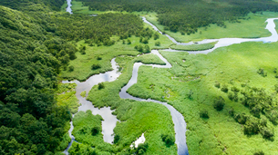 上空から眺める釧路湿原のキラコタン岬の写真素材 [FYI03017499]