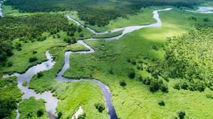 上空から眺める釧路湿原のキラコタン岬の写真素材 [FYI03017505]