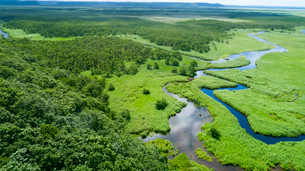 上空から眺める釧路湿原のキラコタン岬の写真素材 [FYI03017508]