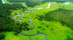 上空から眺める釧路湿原のキラコタン岬の写真素材 [FYI03017512]