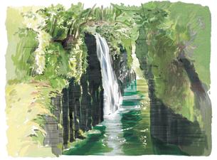 新緑が眩しい高千穂峡真名井の滝のイラスト素材 [FYI03017574]