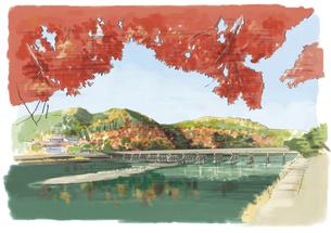 京都嵐山での紅葉狩りと渡月橋のイラスト素材 [FYI03017586]