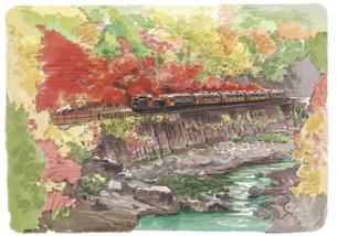 紅いカーテンを観ながら走る嵯峨野トロッコ列車のイラスト素材 [FYI03017602]
