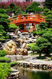 中国庭園 南蓮園の写真素材 [FYI03017630]