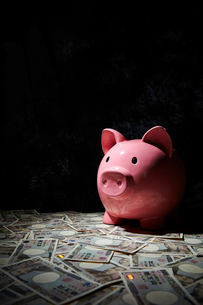 豚の貯金箱と日本円紙幣の写真素材 [FYI03017662]