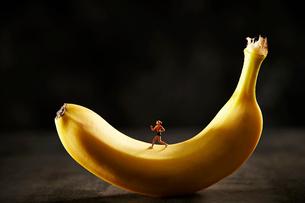 バナナとミニチュアの写真素材 [FYI03017800]