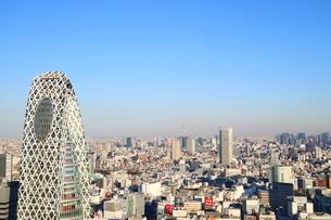 東京都庁から見たスカイツリー方面の写真素材 [FYI03018118]
