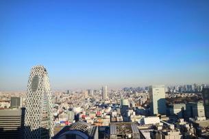 東京都庁から見たスカイツリー方面の写真素材 [FYI03018121]
