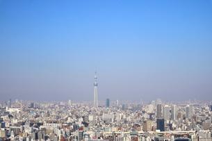 豊洲から見た東京スカイツリー方面の写真素材 [FYI03018130]