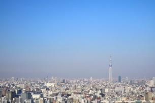 豊洲の高層タワーラウンジから見たスカイツリー方面の風景の写真素材 [FYI03018146]