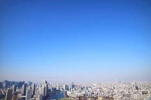豊洲の高層タワーラウンジから見たスカイツリー方面の風景の写真素材 [FYI03018147]