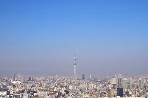 豊洲の高層タワーラウンジから見たスカイツリー方面の風景の写真素材 [FYI03018148]