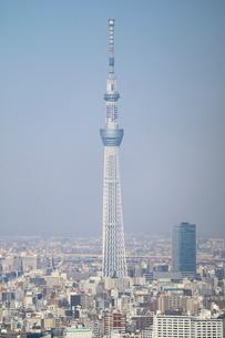 豊洲の高層タワーラウンジから見たスカイツリー方面の風景の写真素材 [FYI03018156]
