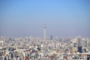豊洲の高層タワーラウンジから見たスカイツリー方面の風景の写真素材 [FYI03018161]