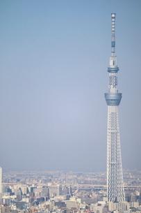 豊洲の高層タワーラウンジから見たスカイツリー方面の風景の写真素材 [FYI03018162]