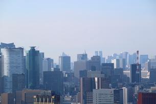 豊洲の高層タワーラウンジから見た汐留方面の風景の写真素材 [FYI03018163]