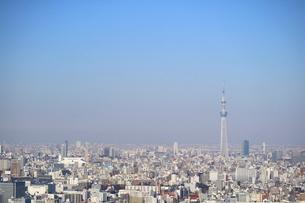 豊洲の高層タワーラウンジから見たスカイツリー方面の風景の写真素材 [FYI03018165]