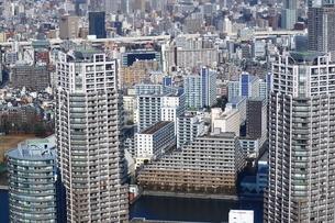 豊洲の高層タワーラウンジから見た豊洲のマンション群の写真素材 [FYI03018167]
