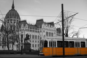 ブダペストを走るトラムの写真素材 [FYI03018205]