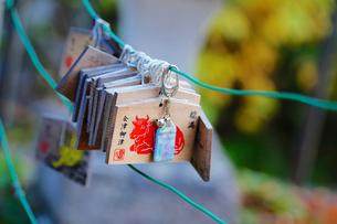 会津 福満虚空菩薩円蔵寺の絵馬の写真素材 [FYI03018214]