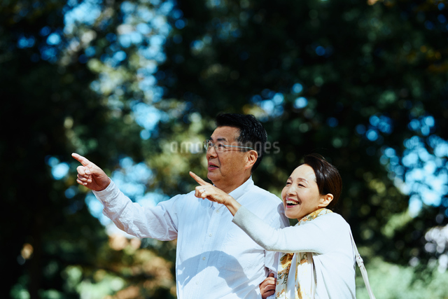 公園で指をさす老夫婦の写真素材 [FYI03018486]
