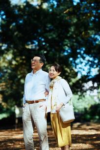 木漏れ日がきれいな公園で散歩する老夫婦の写真素材 [FYI03018498]