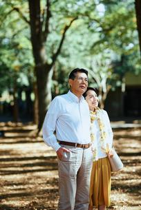 木漏れ日のさす公園で散歩する老夫婦の写真素材 [FYI03018505]