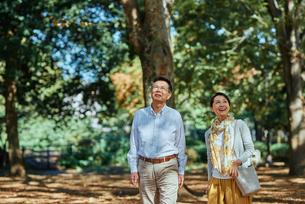 木漏れ日がきれいな公園で散歩する老夫婦の写真素材 [FYI03018520]