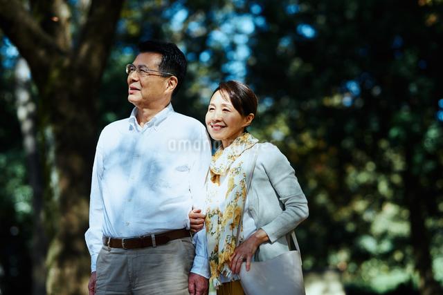 公園で散歩する老夫婦の写真素材 [FYI03018525]