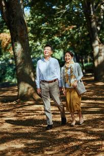 木漏れ日がきれいな公園で散歩する老夫婦の写真素材 [FYI03018528]