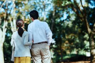 公園で背を向けて散歩する老夫婦の写真素材 [FYI03018531]