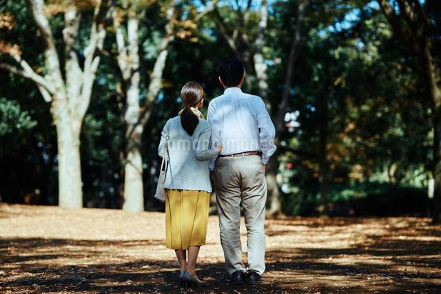 公園で背を向けて散歩する老夫婦の写真素材 [FYI03018535]