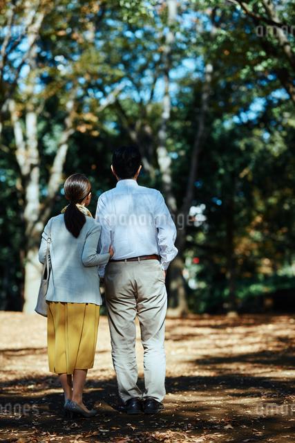 公園で背を向けて散歩する老夫婦の写真素材 [FYI03018536]