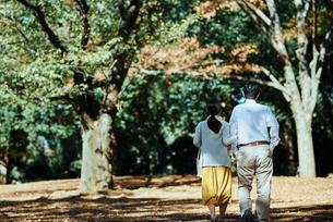 公園で背を向けて散歩する老夫婦の写真素材 [FYI03018537]