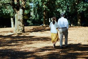 公園で背を向けて散歩する老夫婦の写真素材 [FYI03018538]