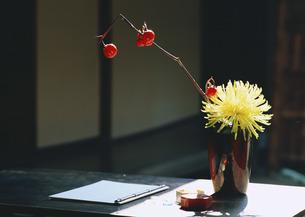生け花の写真素材 [FYI03023977]