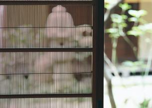 夏障子の写真素材 [FYI03024008]