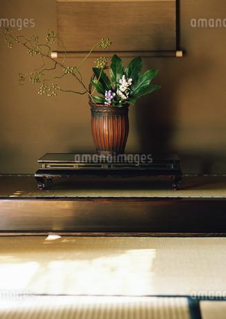 生け花の写真素材 [FYI03024060]