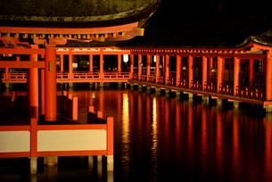 宮島 厳島神社の写真素材 [FYI03024249]