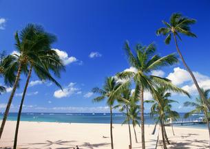 砂浜の写真素材 [FYI03025085]