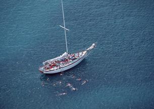 ヨットの写真素材 [FYI03025226]