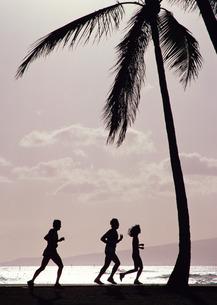 ジョギングの写真素材 [FYI03025247]