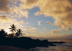 海岸の写真素材 [FYI03025256]