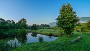 遠野早朝の池の写真素材 [FYI03025366]
