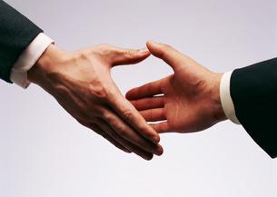 握手の写真素材 [FYI03026995]