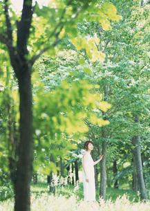 森林の女性の写真素材 [FYI03027516]