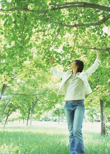 森林と女性の写真素材 [FYI03027553]
