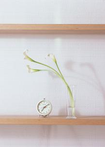 カラーと目覚まし時計の写真素材 [FYI03028068]