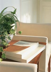 洋書と寄せ植え鉢の写真素材 [FYI03028128]